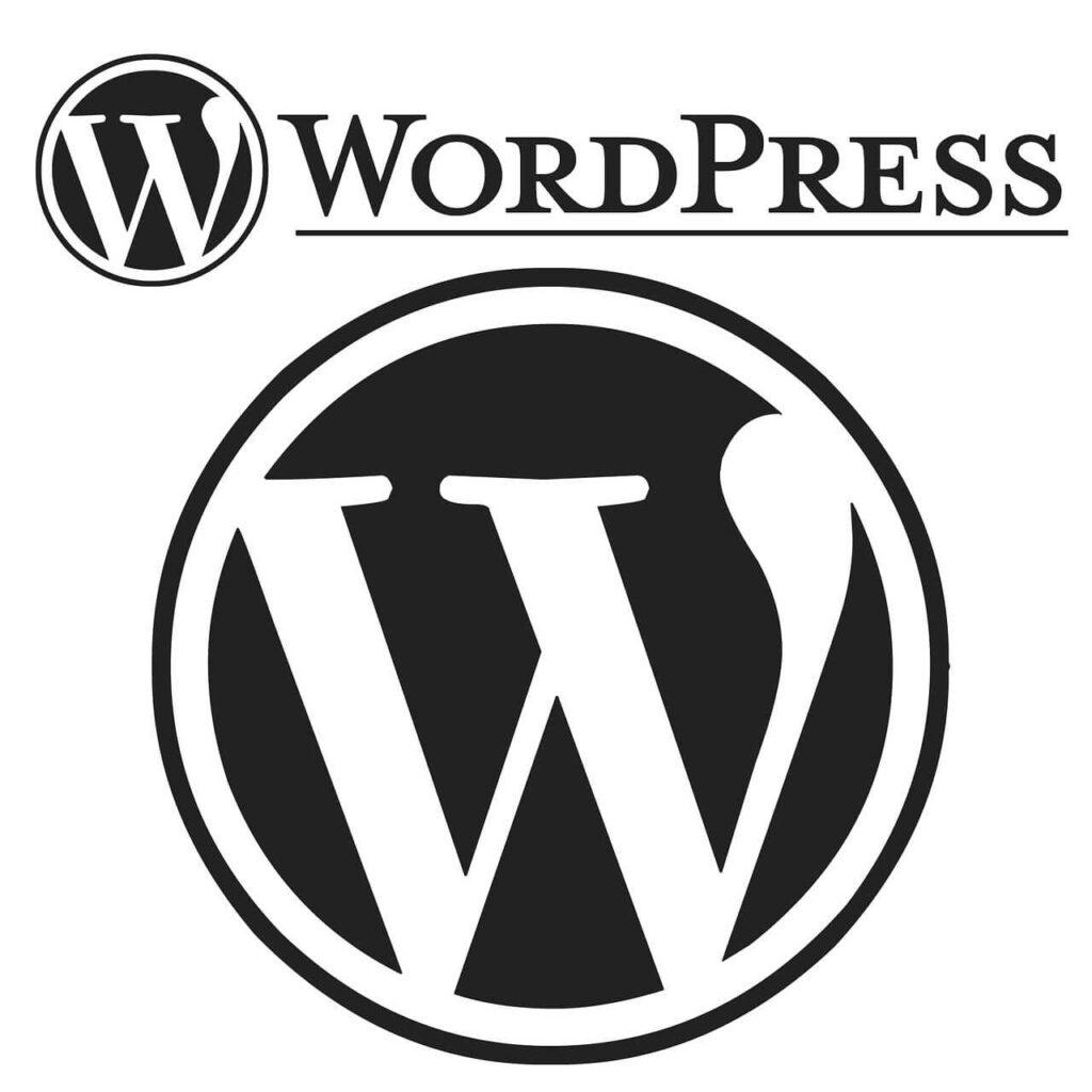 wordpress-setup-with-right-plugins-themes